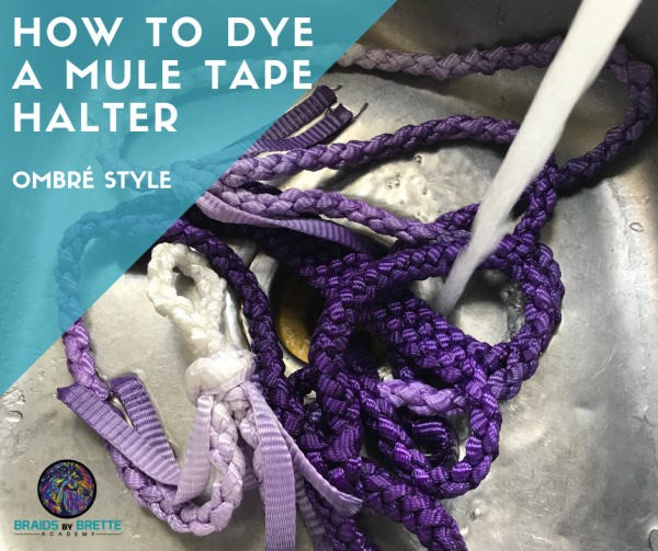 DIY Online Courses for Horse Tack, Paracord & Mule Tape Horse Tack