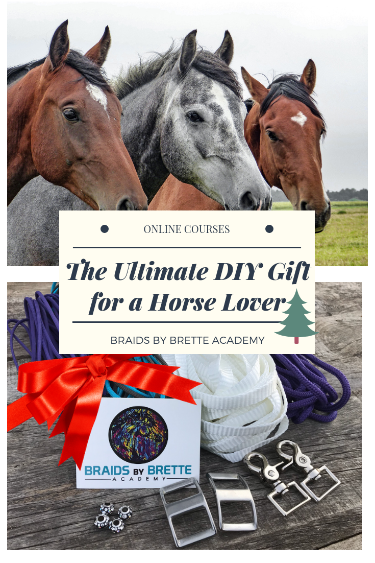 The Diy Horse Tack Gift Box Braids By Brette Academy